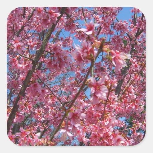 Coleção de florescência de CricketDiane das árvore Adesivo