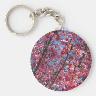 Coleção de florescência de CricketDiane das árvore Chaveiro