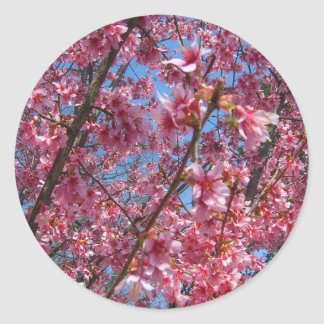 Coleção de florescência de CricketDiane das Adesivos Em Formato Redondos