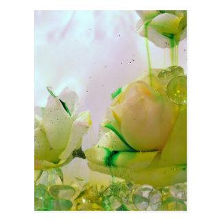 Coleção do rosa amarelo cartão postal