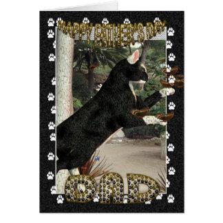 Coleção legal dos gatos de Moonies do cartão do di