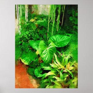 coleção tropical da folha, Fairchild g tropical Posters