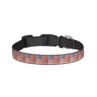 Coleira Bandeira americana resistida, afligida dos EUA