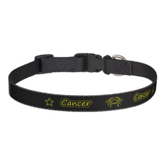 Coleira Cancer brilhante