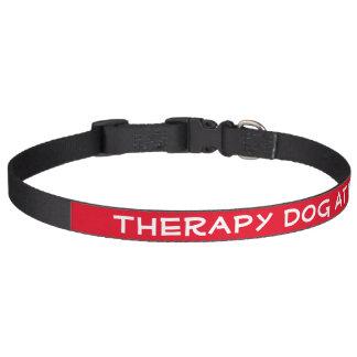 Coleira Cão da terapia no trabalho (grande)
