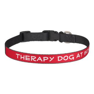 Coleira Cão da terapia no trabalho (meio)