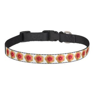 Coleira de cão do meio do hibiscus