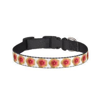 Coleira de cão pequena do hibiscus