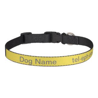 Coleira de cão personalizada!