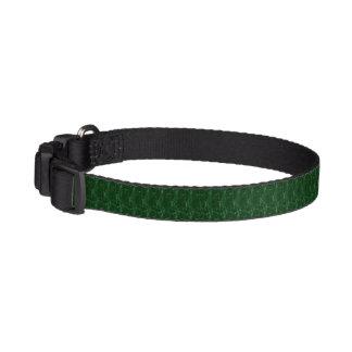Coleira de cão - verde bonito