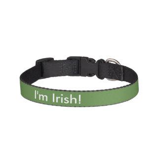 Coleira Eu sou irlandês!