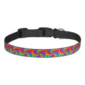 Coleira O arco-íris enraíza o colar de cão de estimação