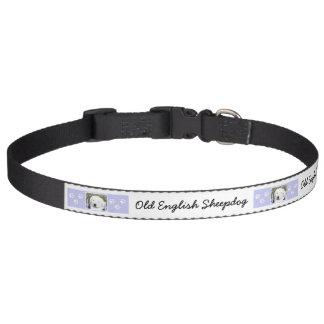 Coleira Sheepdog inglês velho
