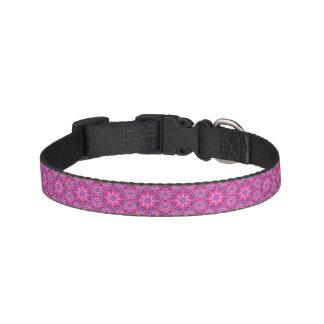 Coleiras de cão telhadas roxas cor-de-rosa de n