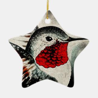 Colibri cómico ornamento de cerâmica estrela