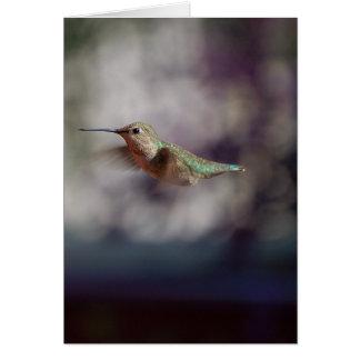 Colibri de bordo cartão comemorativo