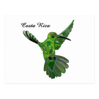 Colibri de Costa Rica Cartao Postal
