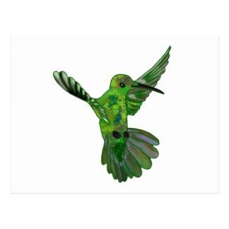 Colibri de Costa Rica Cartões Postais