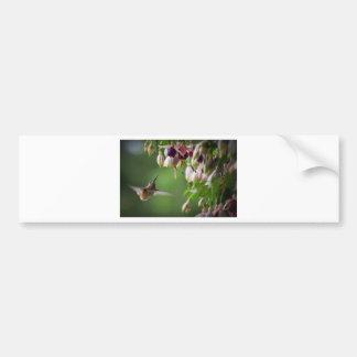 Colibri e planta de Fushia Adesivo Para Carro