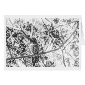 Colibri no cartão vazio preto e branco