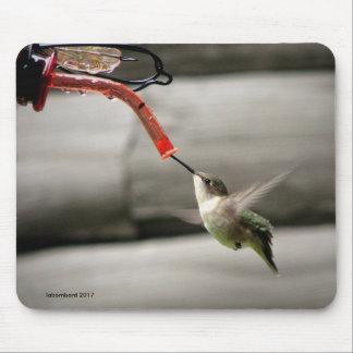 Colibri ocupado Mousepad