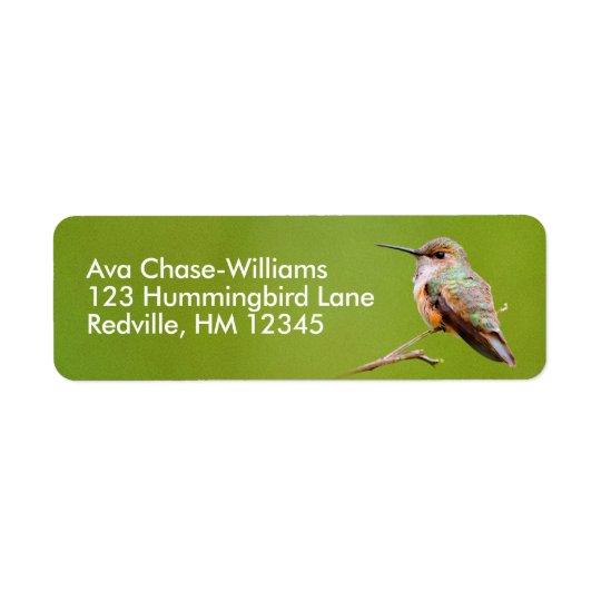 Colibri Rufous que senta-se no Lilac de Califórnia Etiqueta Endereço De Retorno