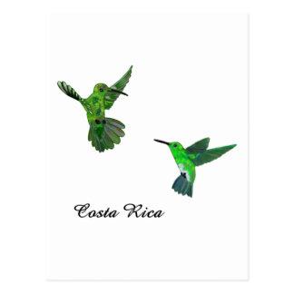 Colibris de Costa Rica Cartao Postal