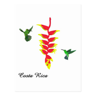 Colibris e Heliconia de Costa Rica Cartoes Postais