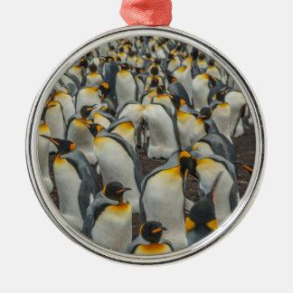 Colônia do pinguim de rei, Malvinas Ornamento De Metal