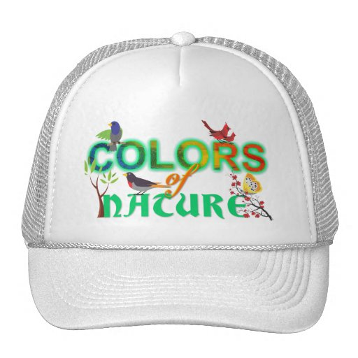 Colore da selva colorida dos pássaros da natureza  boné