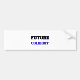 Colorist futuro adesivo para carro