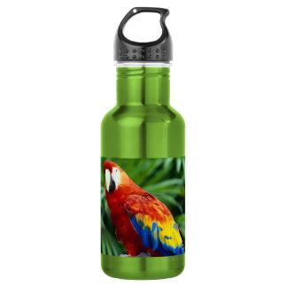 com imagem do papagaio bonito