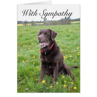 Com o cartão do cão de estimação da simpatia