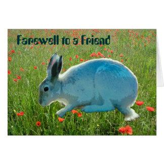 Com simpatia perda de um coelho cartao