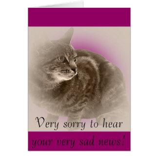 Com simpatia (perda de um gato) cartões
