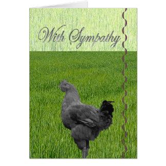 Com simpatia perda de uma galinha cartões