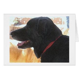 Comemore o aniversário do amante do cão cartão comemorativo