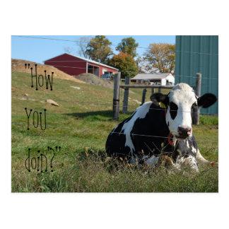 """""""Como VOCÊ cartão da vaca do doin'?"""""""
