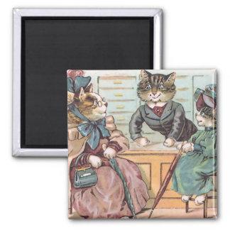 Comprar das senhoras do gato imãs