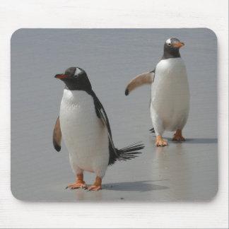 Computador bonito Mousepad dos pinguins de Gentoo