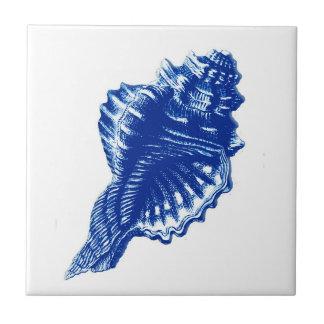 Conch Shell, azul de índigo e branco