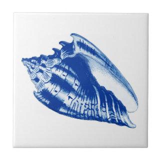 Conch Shell do turbante, azul de índigo e branco