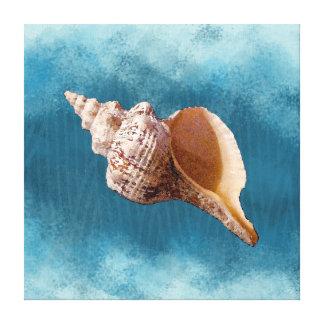 Conch Shell em canvas