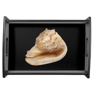 Conch Shell que serve a bandeja