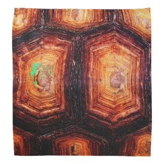 Concha de tartaruga bandanas