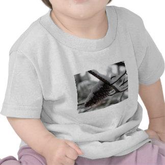 cone nevado do pinho camisetas