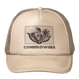 Coneflowers Bones