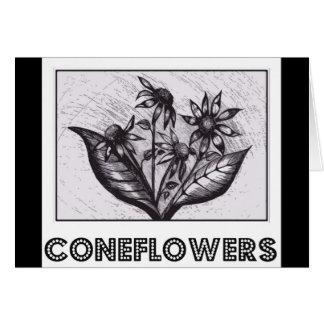 Coneflowers Cartão Comemorativo