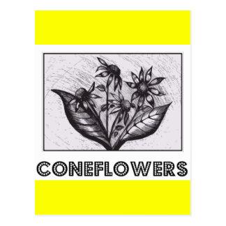 Coneflowers Cartões Postais