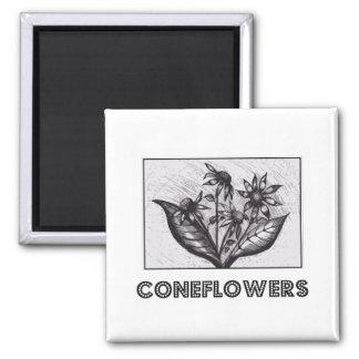 Coneflowers Ímã Quadrado